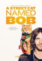 En gatekatt ved navn Bob